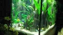 Aquarium Becken 3215