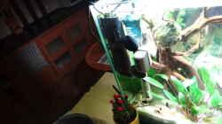 Technik im Aquarium Miniunterwasserwelt
