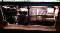 Filterbecken mit Rollermat Vliesfilter