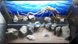 fertiges Hardscape