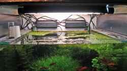 Technik im Aquarium Becken 3630