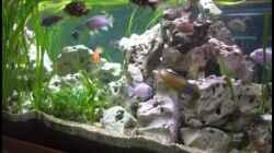 Aquarium Becken 7069