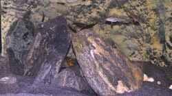 Aquarium Sand & Steine