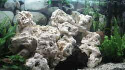 Aquarium Becken 7460