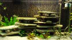 Die aufgeschichteten Natursteinplatten