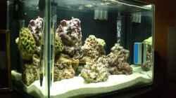 Aquarium Becken 8937