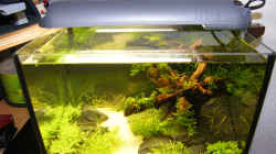 Aquarium Becken 9614