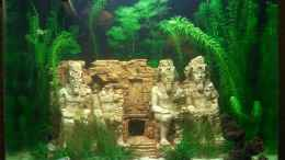 aquarium-von-simon-says-abu-simbel-cube_21.02.2011