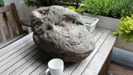 aquarium-von-cruiser-bruno-klein-malawi-in-berlin_Rockzolid River Stone J
