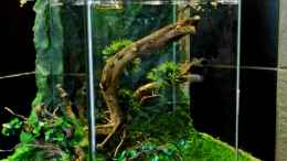 aquarium-von-snooze-new-way_