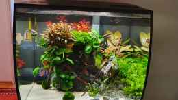 aquarium-von-eugenio-bravo-fluval-aquascaping_ Fluval Aquascaping