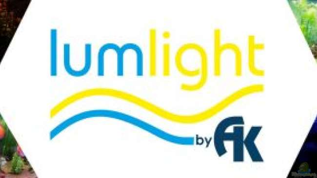 Lum-Light by AK