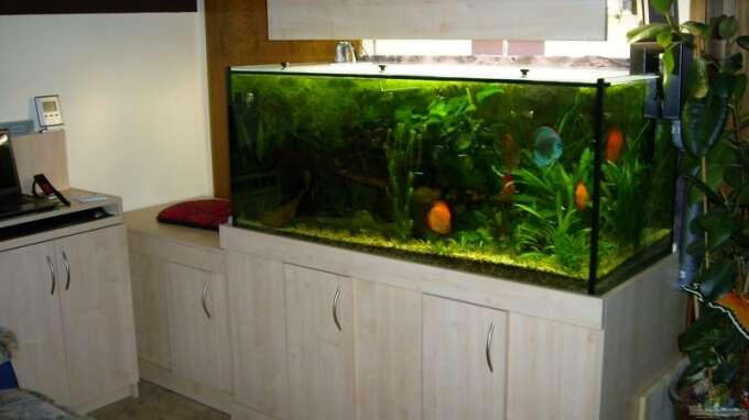 Aquarium Hauptansicht von Becken 10504