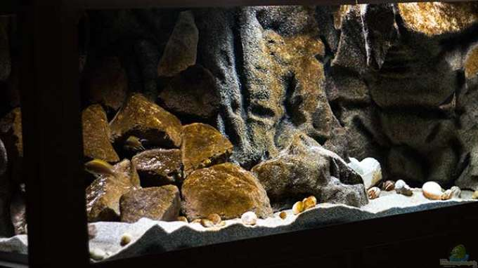 Projekt `SandStorm - Ranga Cave`