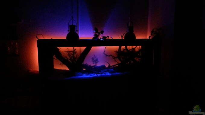 beleuchtung ab 20 uhr und um 00 uhr schaltet sich das rote licht aus aus erstes s damerika. Black Bedroom Furniture Sets. Home Design Ideas