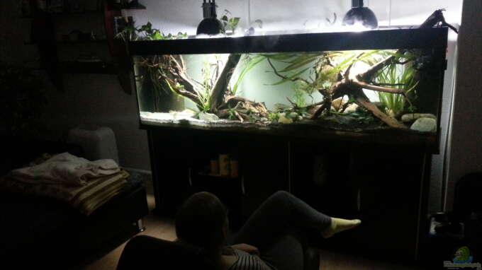 Aquarium Hauptansicht von erstes Südamerika Aquarium