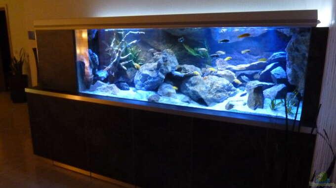Aquarium Hauptansicht von Becken 32316