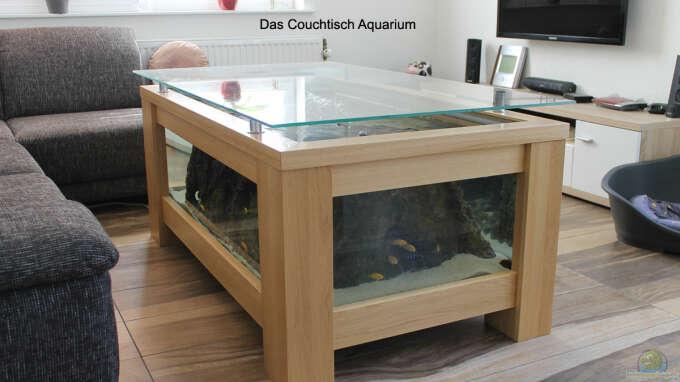 Florian b hling 33219 couchtisch aquarium for Aquarium wohnzimmertisch