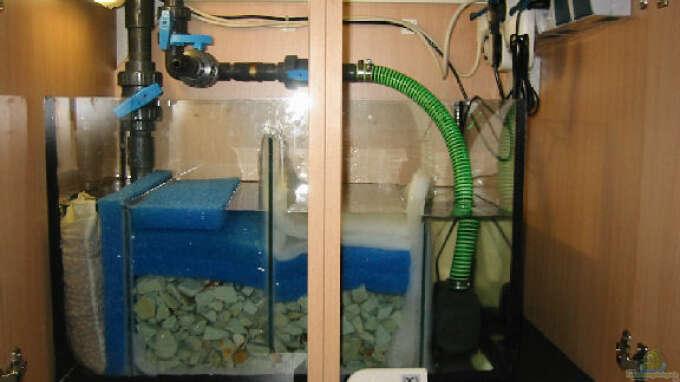 Meerwasser filter selber bauen aquarienbau brillant aquarium mehr 252 ber filterset seewasser - Duschwand selber bauen ...