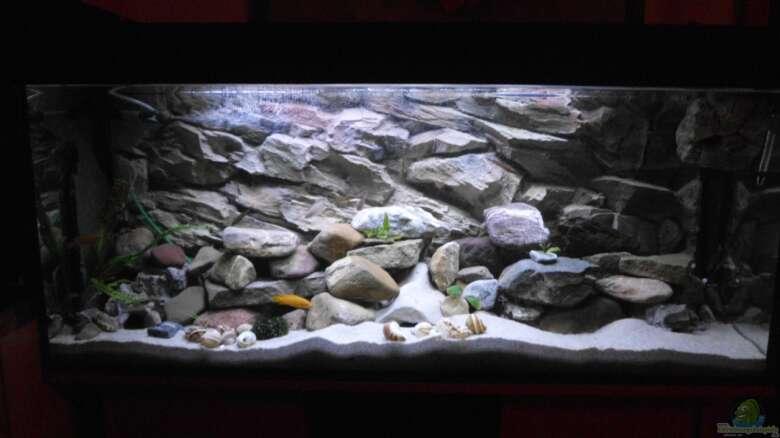Aquarien mit LED-Beleuchtung   Einrichtungsbeispiele