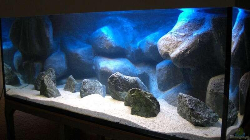 Malawi Beleuchtung | Becken Mit Beleuchtung Beider Rohren 100 Sand Und Basaltsteine