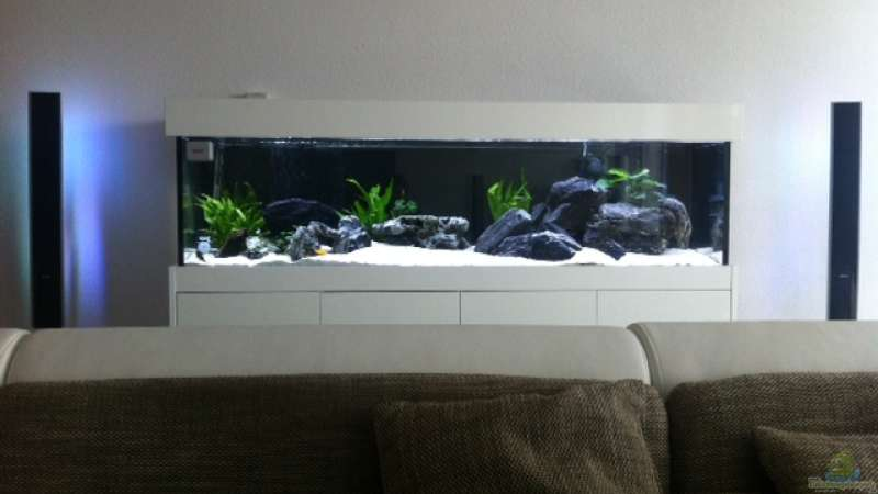 Aquarium zwischen LED Dolby Surround System