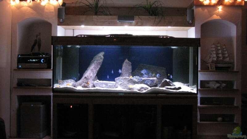 Aquarium von AquaMalawi (509): Wohnzimmer