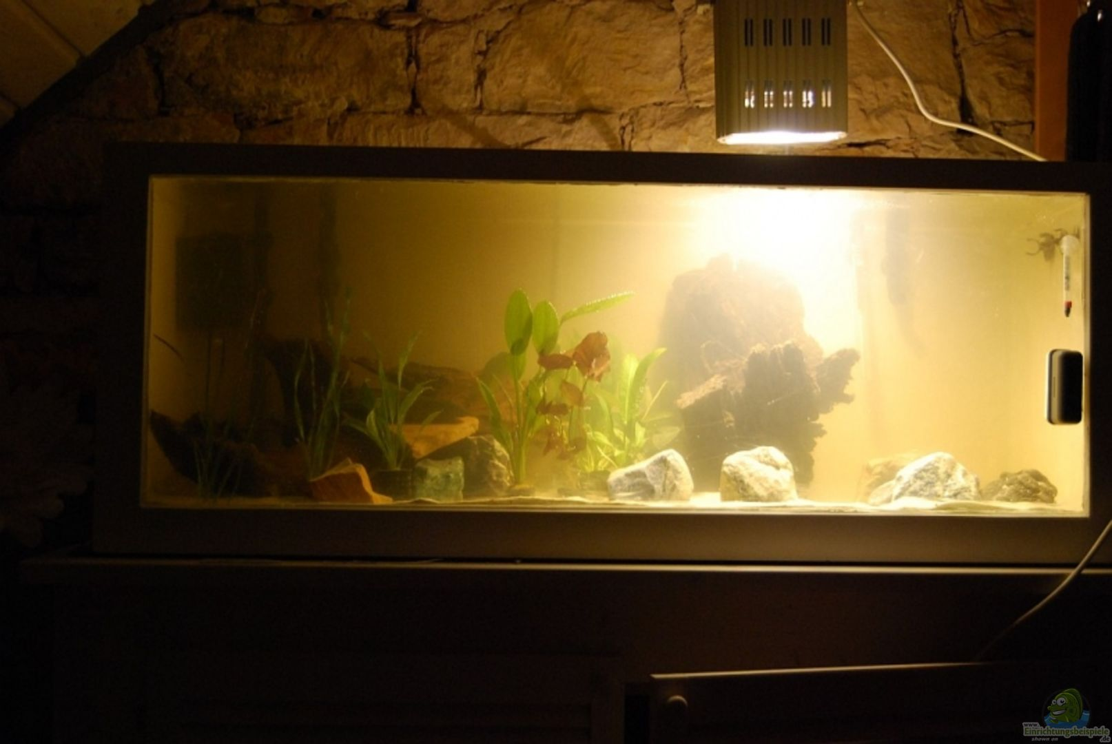 aquarium von sebastian buntin becken 10070. Black Bedroom Furniture Sets. Home Design Ideas