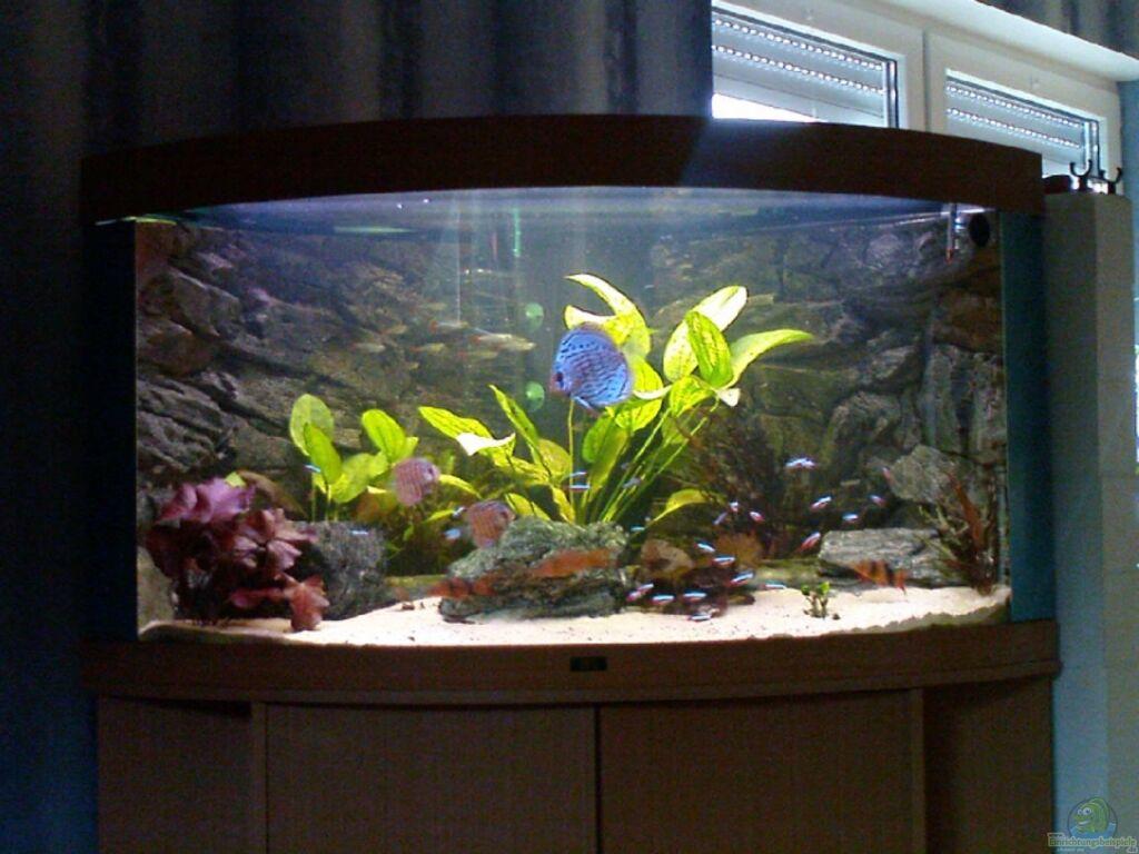 aquarium von pick wick becken 10662. Black Bedroom Furniture Sets. Home Design Ideas