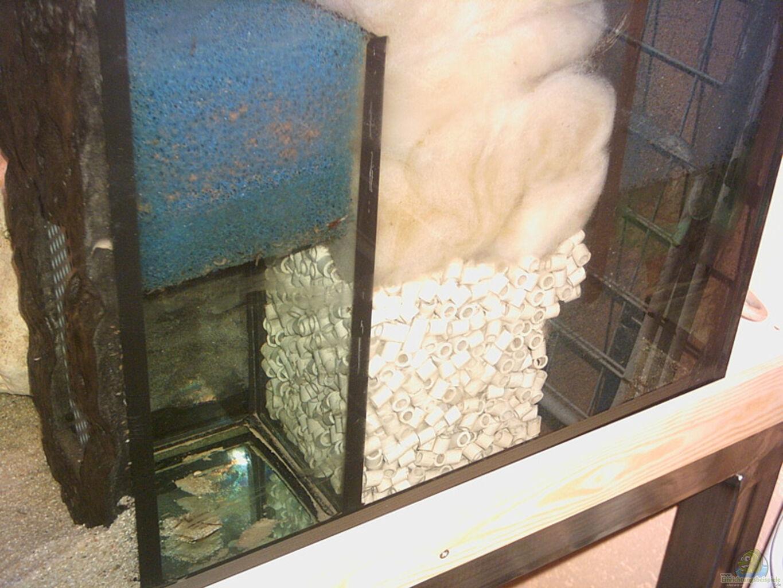 aquarium von armin lange becken 1096. Black Bedroom Furniture Sets. Home Design Ideas