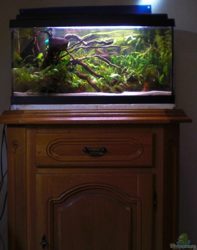 aquarium schrank aquatlantis fusion aquarium cabinet mm. Black Bedroom Furniture Sets. Home Design Ideas