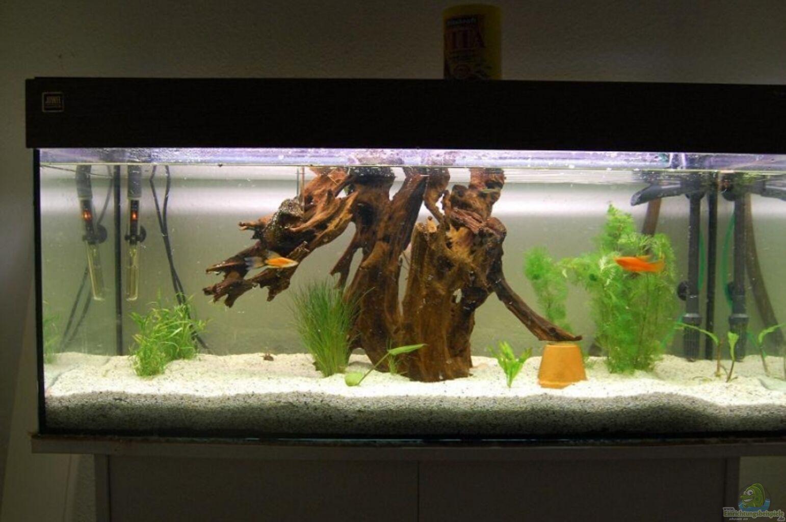 aquarium von der b rliner flur. Black Bedroom Furniture Sets. Home Design Ideas