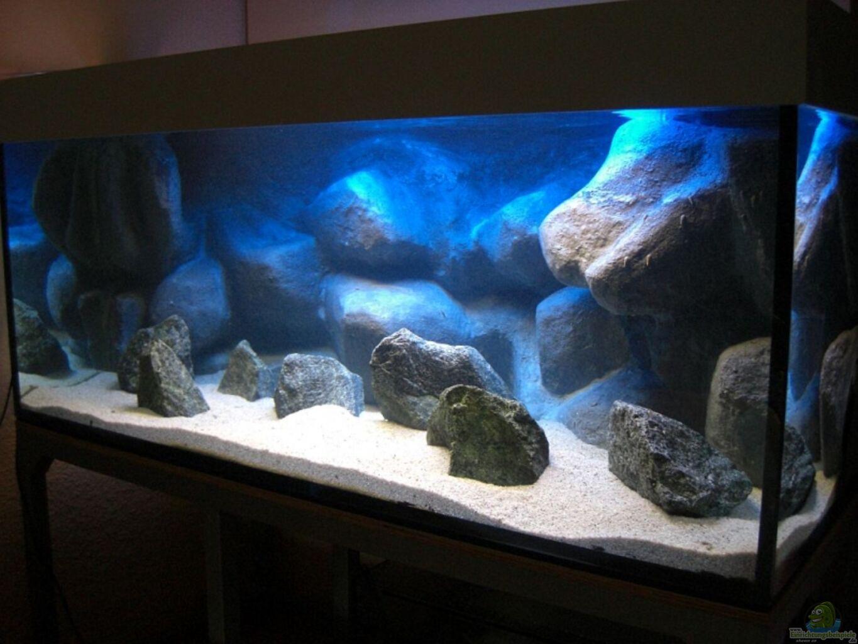 aquarium von matoba nur noch 630 liter malawi beispiel. Black Bedroom Furniture Sets. Home Design Ideas