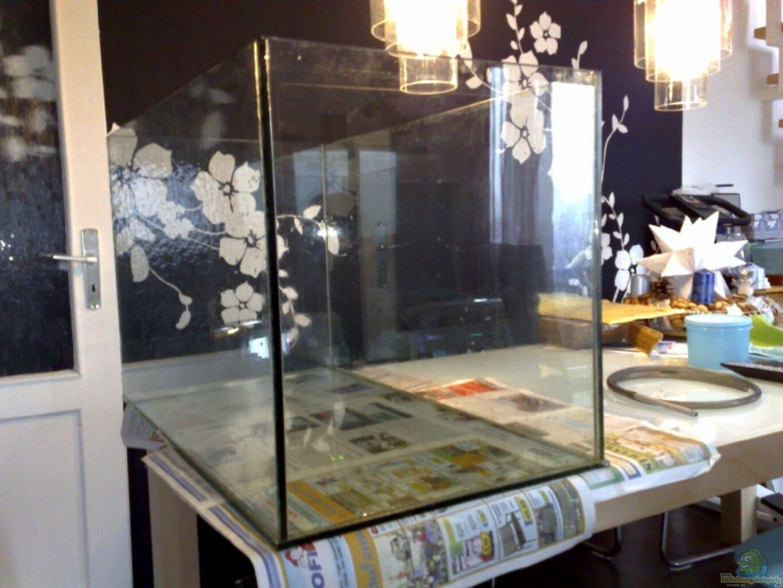 aquarium von christian both becken 12778. Black Bedroom Furniture Sets. Home Design Ideas
