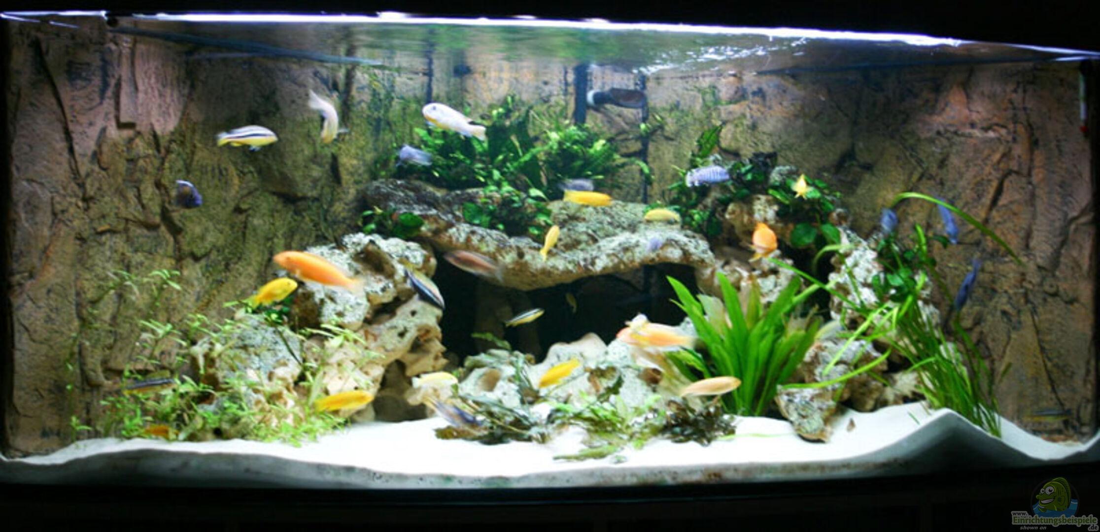 aquarium von sven koch becken 1288. Black Bedroom Furniture Sets. Home Design Ideas