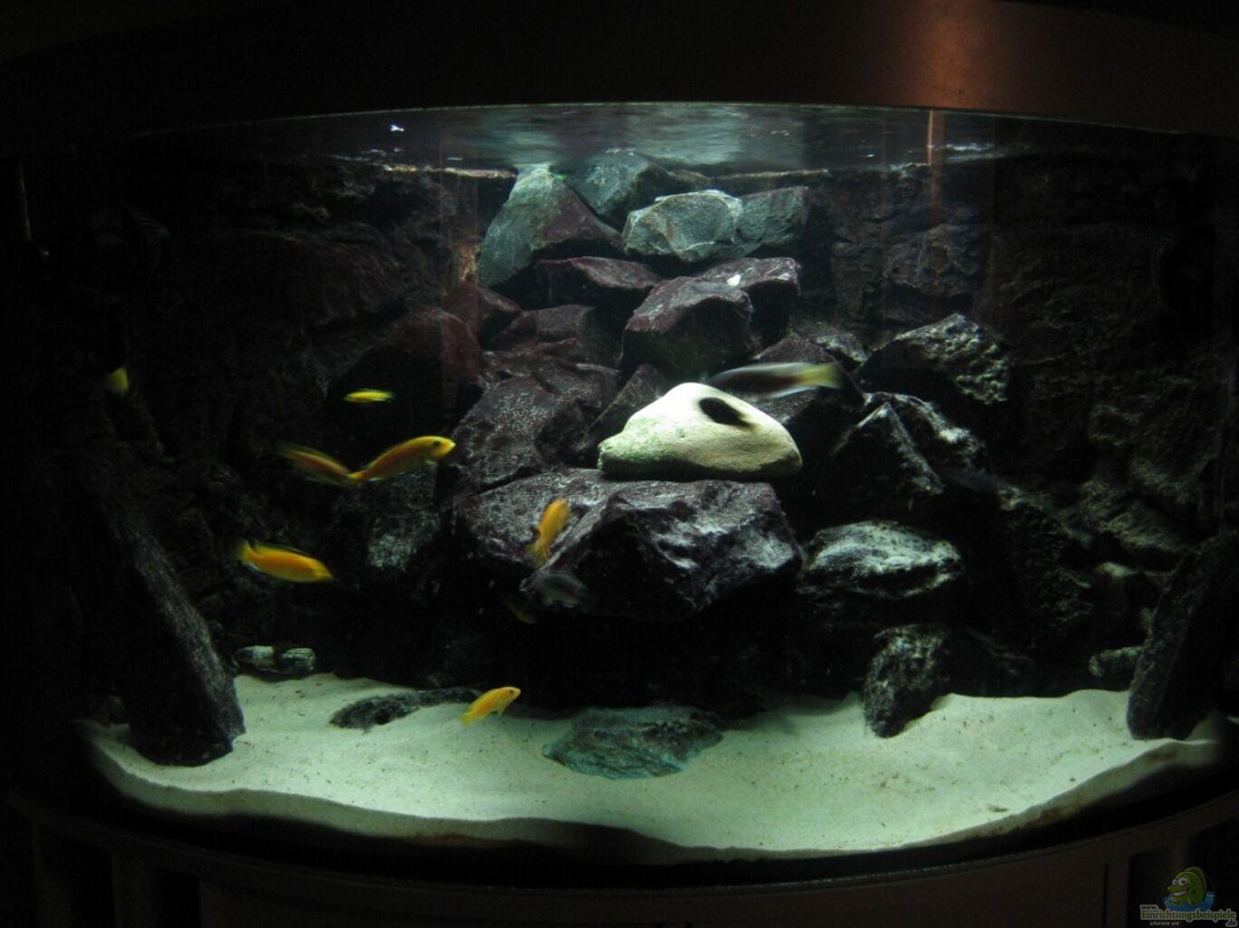 es liegt was im dunklen aus eck aquarium von hessijames. Black Bedroom Furniture Sets. Home Design Ideas