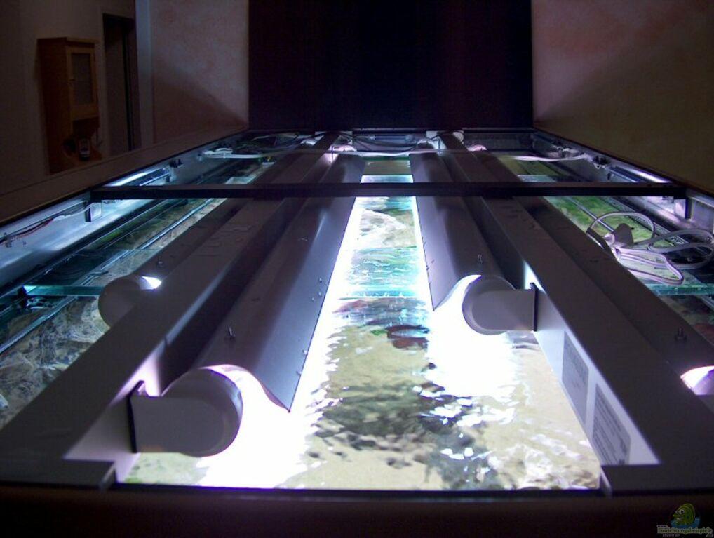Aquarium von daniel nimmervoll becken 1381 for Aquarium abdeckung