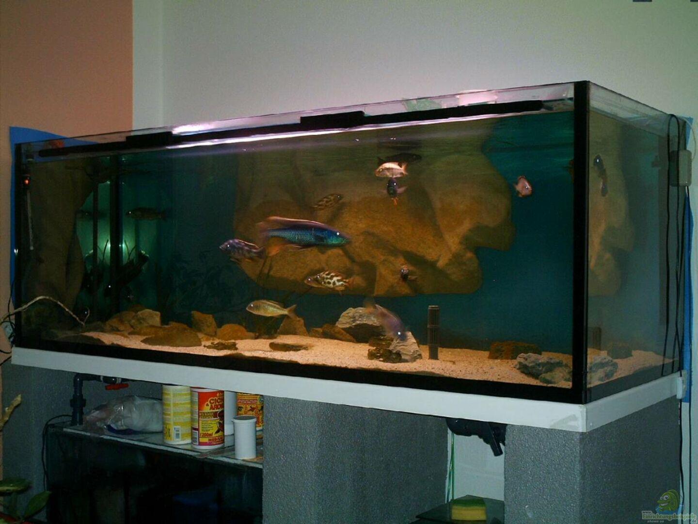 aquarium von ronny laumer becken 14013. Black Bedroom Furniture Sets. Home Design Ideas