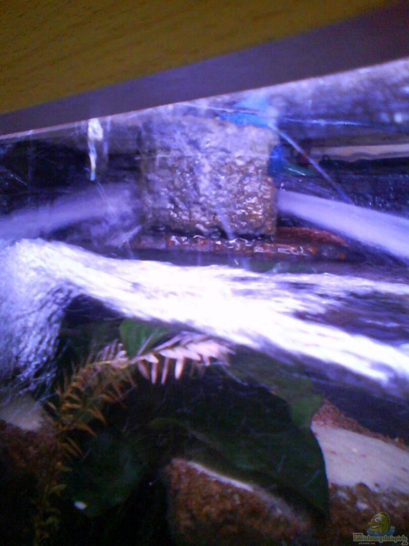 Technik im aquarium atlantis aus atlantis von laey for Aquarium heizen