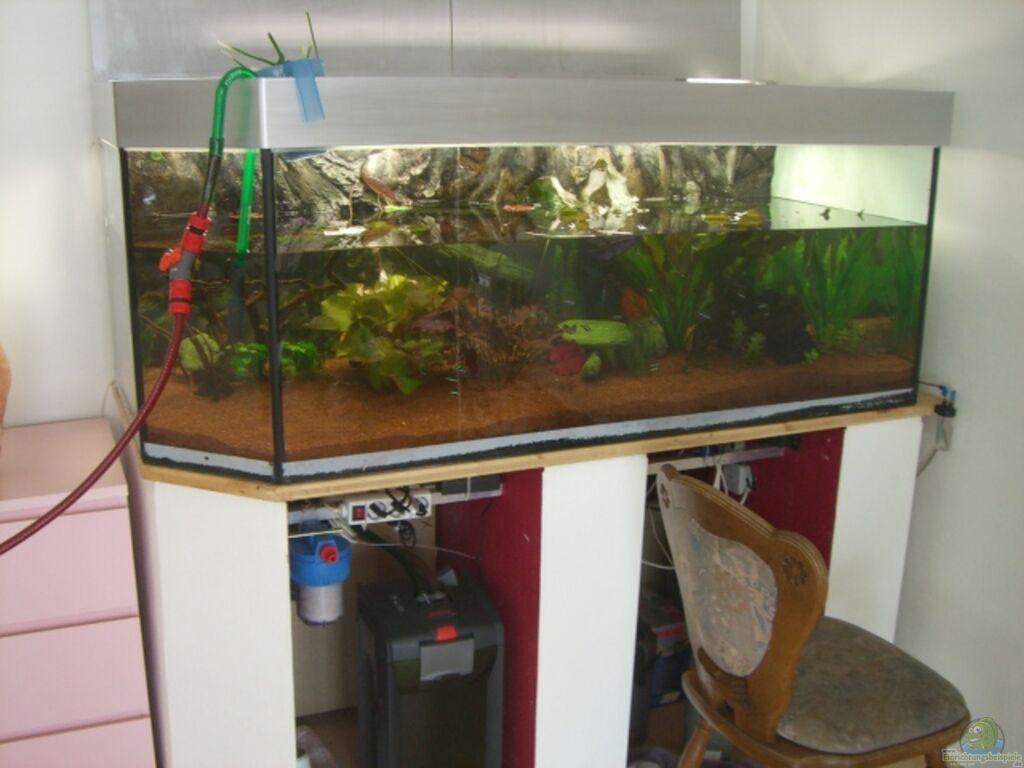 Aquarium von dimi georgomanos amazon wohnen for Aquariumschrank selber bauen