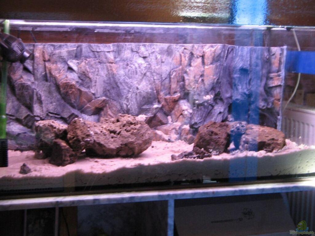 Aquarium von frank fischer waterhome for Waterhome aquarium