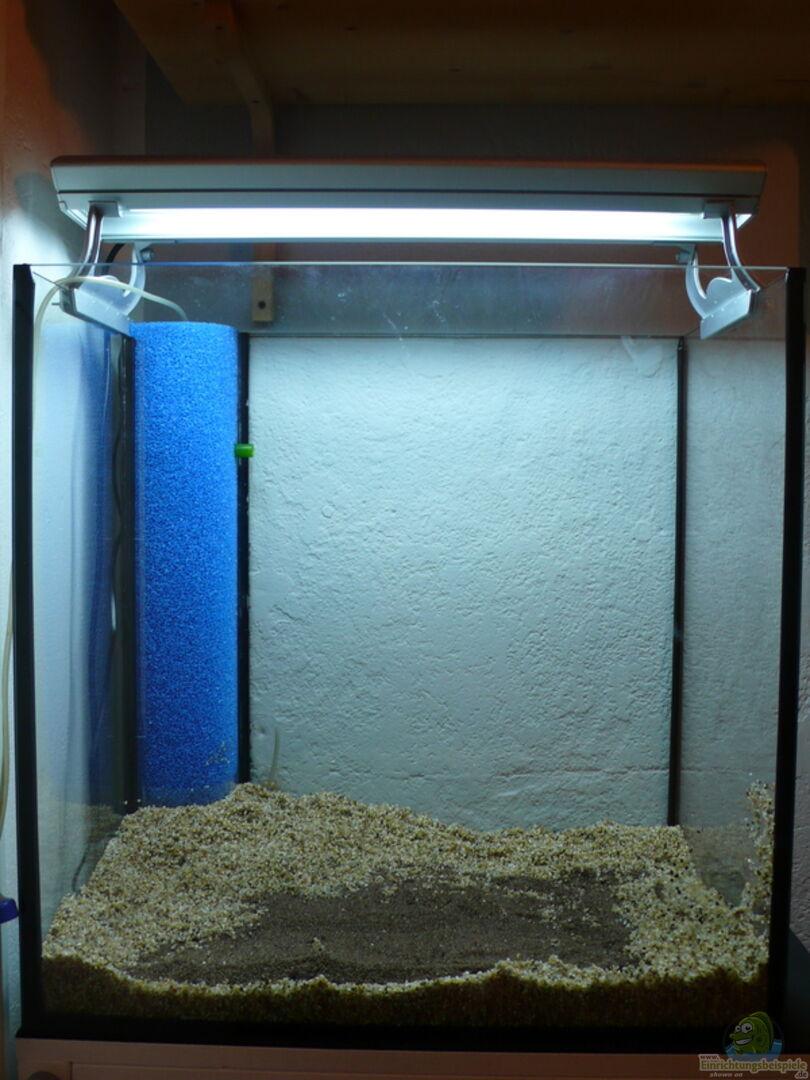 technik im aquarium herbststimmung nicht mehr in betrieb aus herbststimmung nicht mehr in. Black Bedroom Furniture Sets. Home Design Ideas