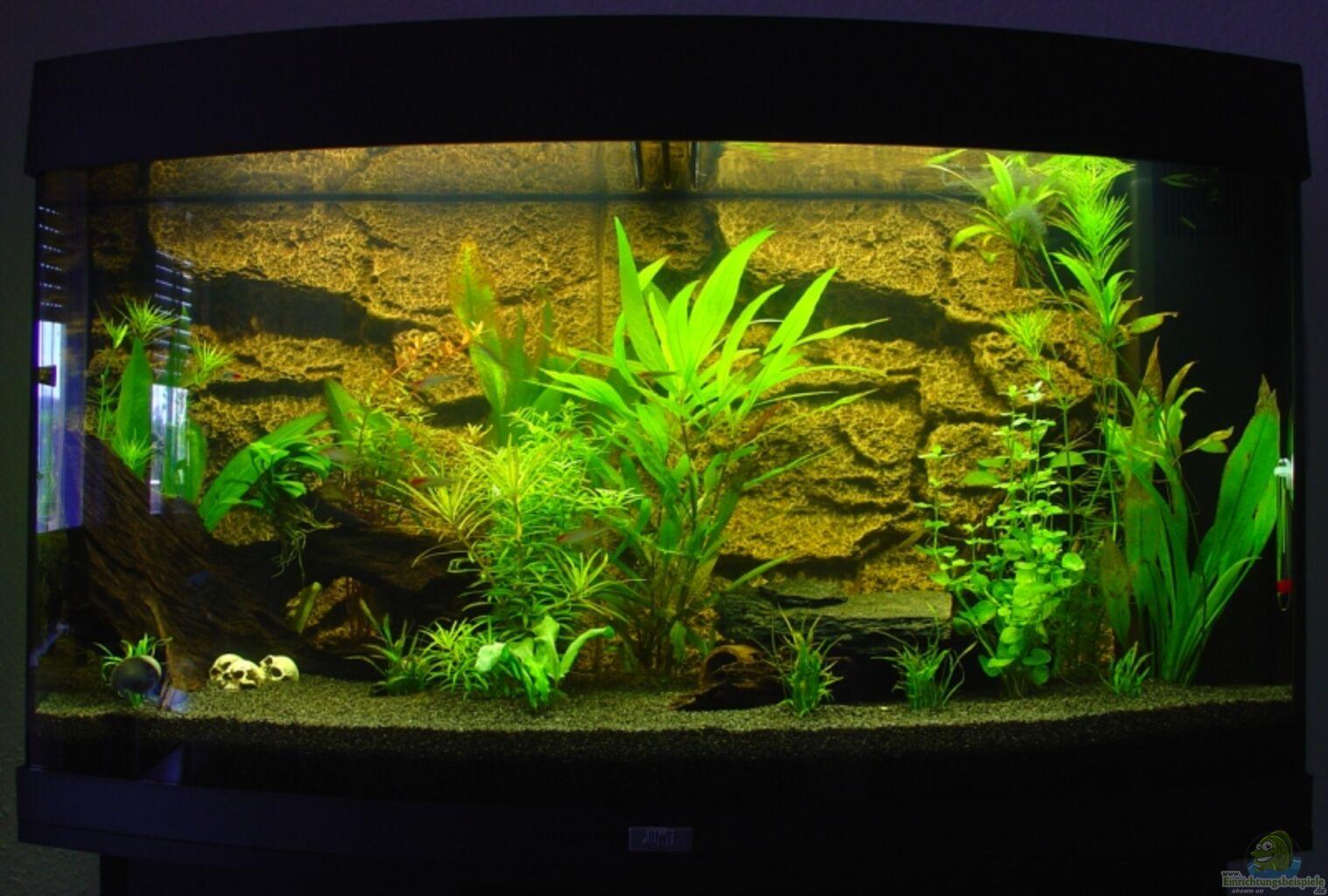 aquarium von s3racer juwel vision 180. Black Bedroom Furniture Sets. Home Design Ideas