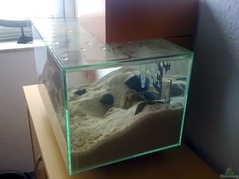 aquarium von getreal maola. Black Bedroom Furniture Sets. Home Design Ideas