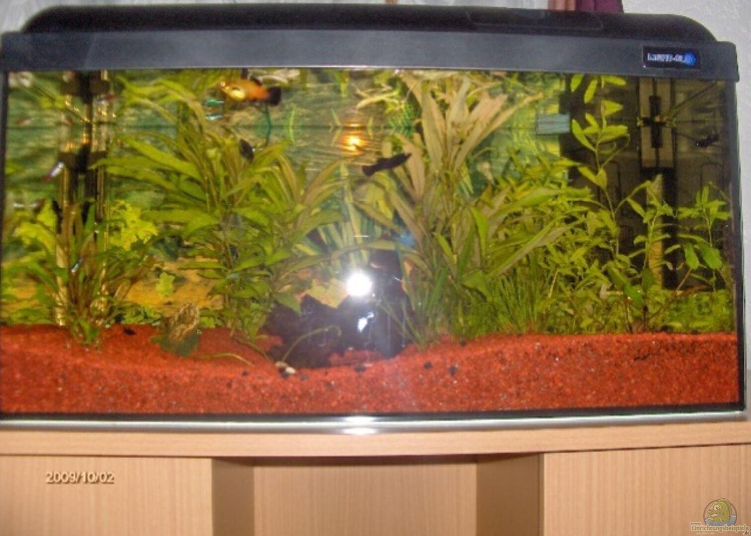 aquarium von reallordofnothing 14934 becken. Black Bedroom Furniture Sets. Home Design Ideas
