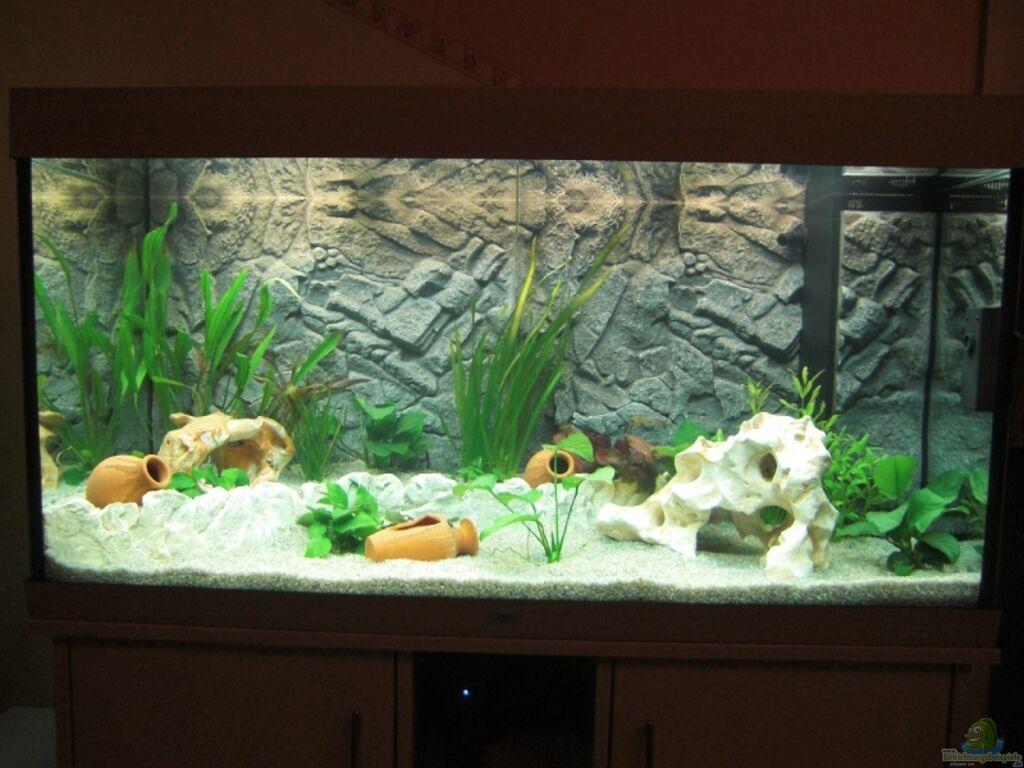 aquarium von manuel weindl juwel rio 300. Black Bedroom Furniture Sets. Home Design Ideas