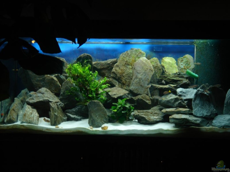 aquarium von traenenreiter becken 15583. Black Bedroom Furniture Sets. Home Design Ideas