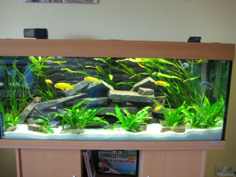 aquarium von superreal juwel rio 240. Black Bedroom Furniture Sets. Home Design Ideas
