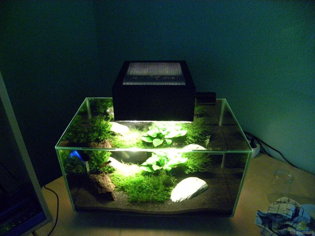 Aquarium von i r c h a fluval edge for Aquarium edge