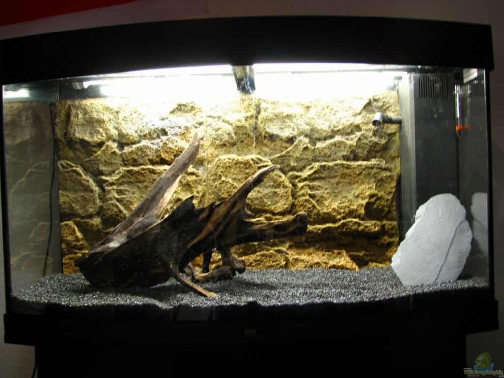 aquarium von zyx82 juwel vision 180. Black Bedroom Furniture Sets. Home Design Ideas